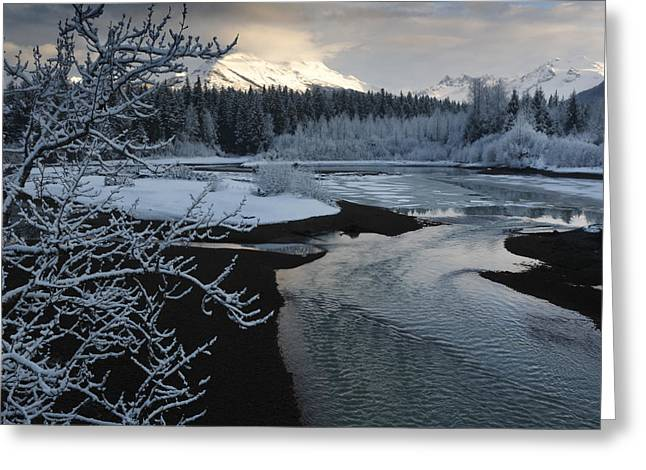 Tongass Greeting Cards - A Storm Clears Along The Mendenhall Greeting Card by Melissa Farlow
