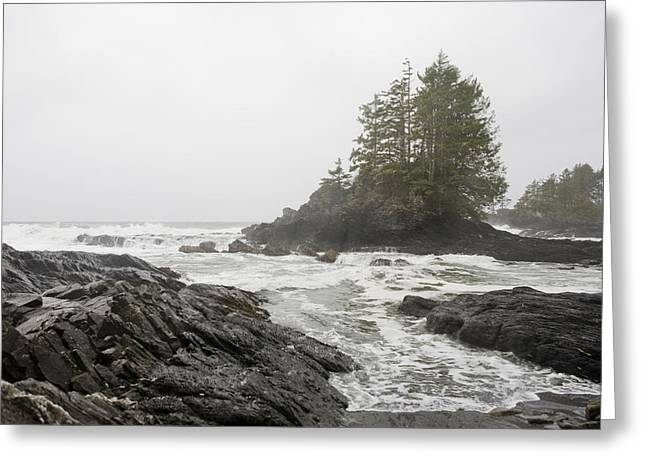 Port Renfrew Greeting Cards - A Storm Lashes The Pacific Coastline Greeting Card by Taylor S. Kennedy