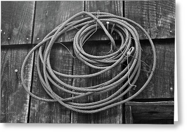 Cold Feet Greeting Cards - A Study of Wire in Gray Greeting Card by Douglas Barnett