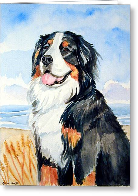 Bernese Greeting Cards - A Summer Day - Bernese Mountain Dog Greeting Card by Lyn Cook