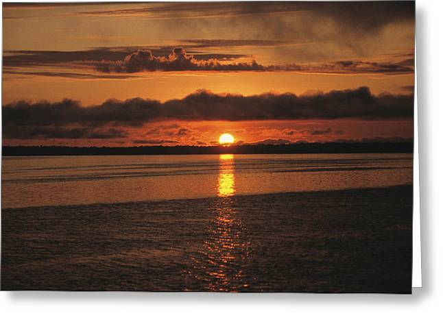 Negro Greeting Cards - A Sunset On The Rio Negro In Brazil Greeting Card by Ed George