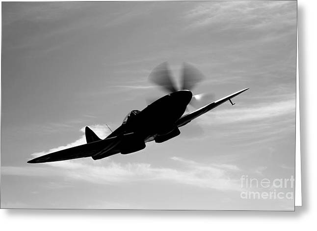 A Supermarine Spitfire Mk-18 In Flight Greeting Card by Scott Germain