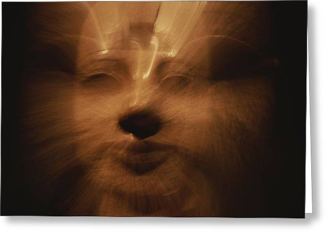 Pharaoh Greeting Cards - A Time Exposure Zoom Portrait Greeting Card by Stephen St. John
