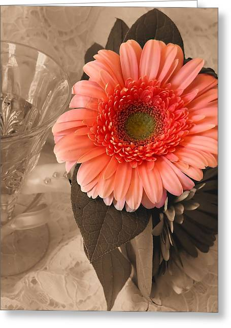 Lynnette Johns Greeting Cards - A Touch of Color Greeting Card by Lynnette Johns