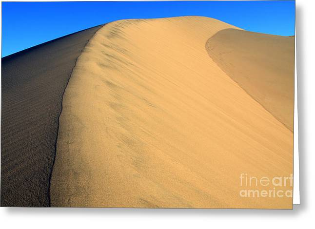 Sand Pattern Greeting Cards - A Touch Of Gold Greeting Card by Bob Christopher