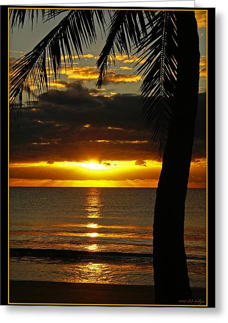 Tropical Oceans Greeting Cards - A Touch of Paradise Greeting Card by Holly Kempe