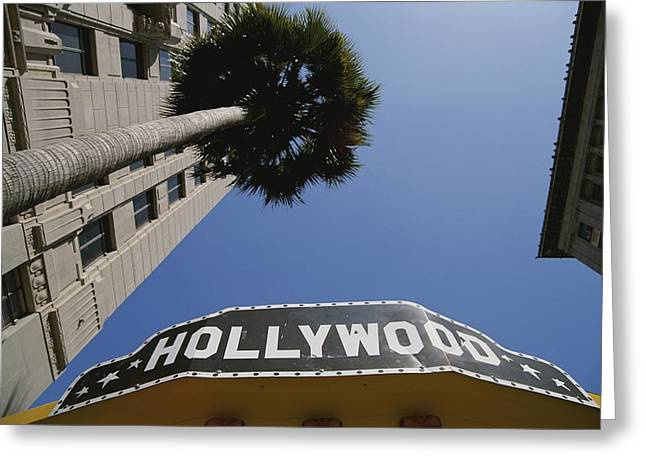 Plant Hollywood Greeting Cards - A Tour Bus Sign And A Palm Tree Scream Greeting Card by Stephen St. John