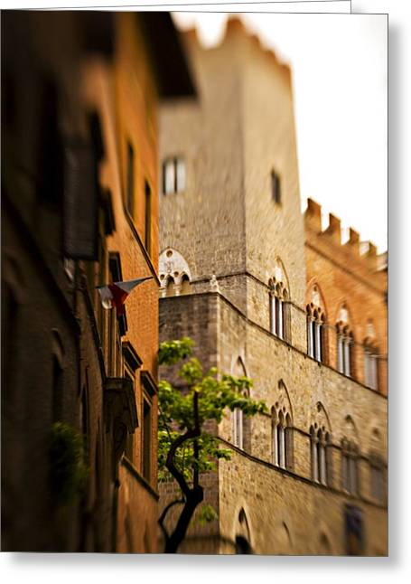 Sienna Italy Photographs Greeting Cards - A Tree Grows Greeting Card by Marilyn Hunt