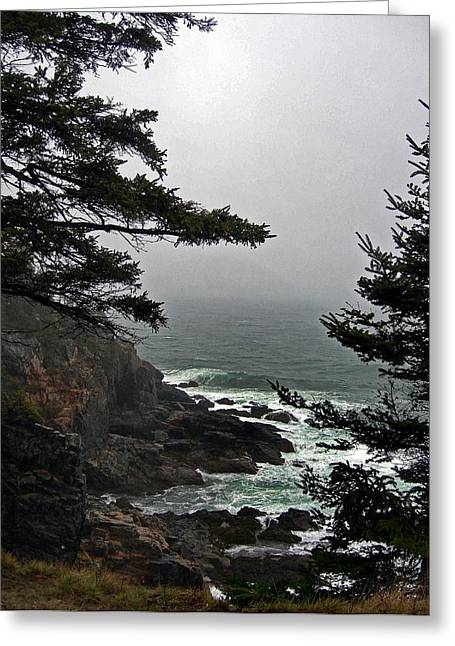 Senic View Greeting Cards - A Tricky Acadian Cove Greeting Card by Skip Willits