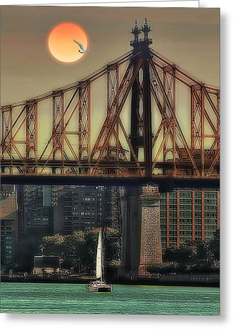 A Trip Under The Bridge Greeting Card by Tom York Images