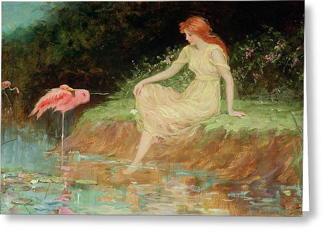 Flamingo Greeting Cards - A Trusting Moment Greeting Card by Frederick Stuart Church