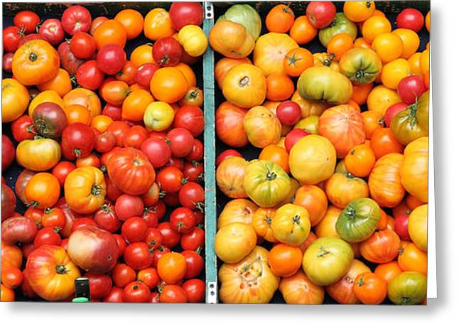 Organic Greeting Cards - A Variety of Fresh Tomatoes - 5D17904-long Greeting Card by Wingsdomain Art and Photography