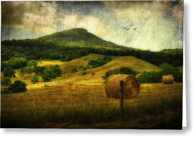 Rockbridge County Greeting Cards - A View Of Jump Mountain Greeting Card by Kathy Jennings