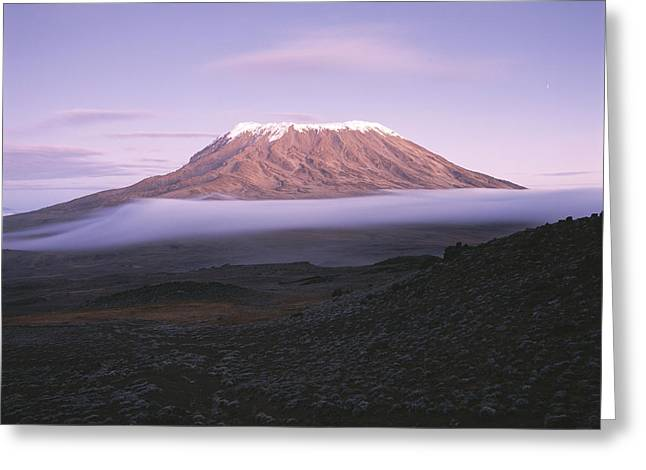 A View Of Snow-capped Mount Kilimanjaro Greeting Card by David Pluth