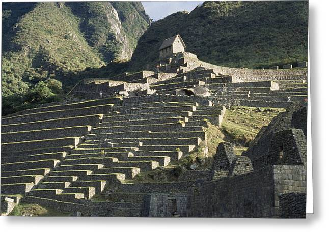 Art Of Building Greeting Cards - A View Of Stone Terraces At Machu Greeting Card by David Evans
