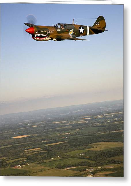 Fighter Star Fighter Greeting Cards - A Vintage World War Ii P-40n Fighter Greeting Card by Pete Ryan
