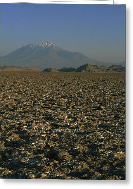 Dry Lake Greeting Cards - A Volcano Rises Above A Dry Lake Bed Greeting Card by Gordon Wiltsie