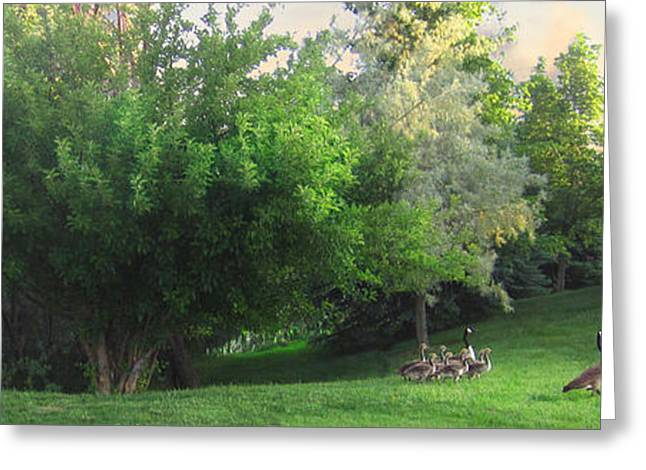 Luminist Greeting Cards - A Walk in the Park Greeting Card by Ric Soulen