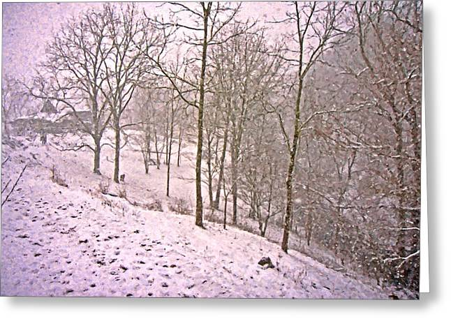 Snow-covered Landscape Digital Art Greeting Cards - A Walk in the Snow Greeting Card by Betsy C  Knapp