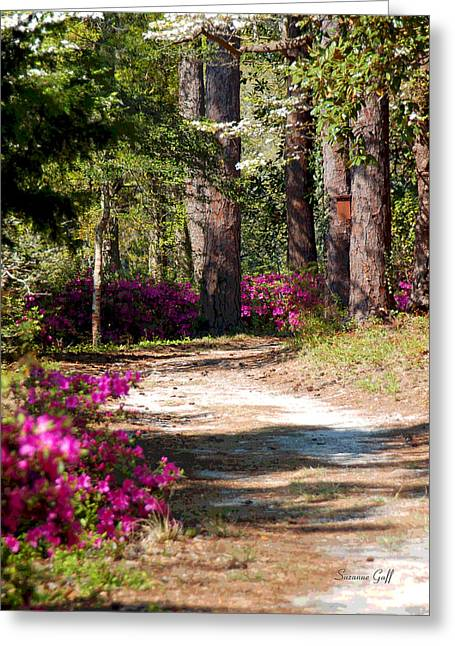 Roadway Digital Art Greeting Cards - A Walk in the Springtime Woods Greeting Card by Suzanne Gaff