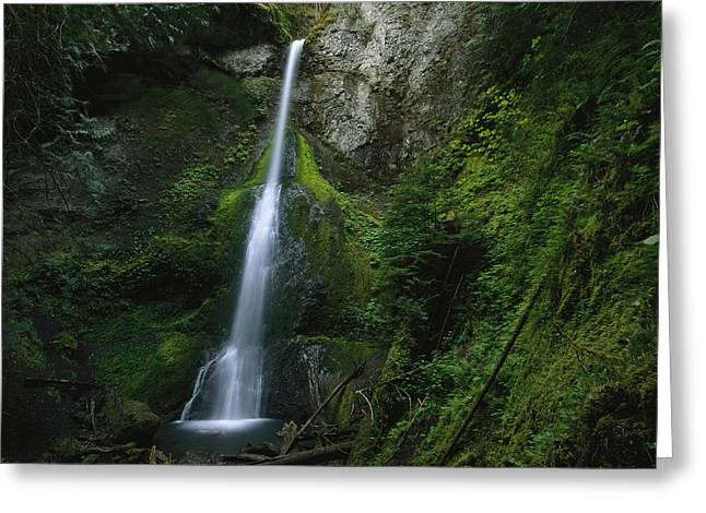 Moss Green Greeting Cards - A Waterfall Cascading Greeting Card by Melissa Farlow