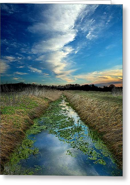 Geographic Greeting Cards - A Waters Way Greeting Card by Phil Koch