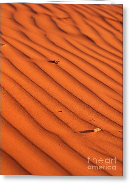 Sunset Abstract Greeting Cards - A wave-like pattern on sand Greeting Card by Hideaki Sakurai