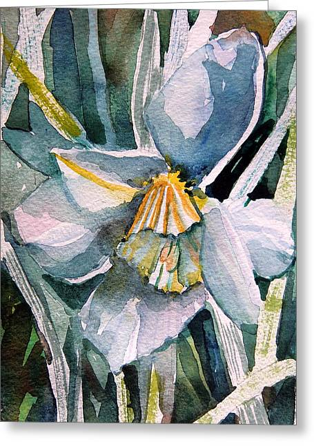 Spring Bulbs Drawings Greeting Cards - A Weepy Daffodil Greeting Card by Mindy Newman