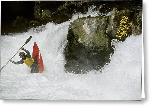 White Salmon River Greeting Cards - A Whitewater Kayaker Plays At The Base Greeting Card by Skip Brown