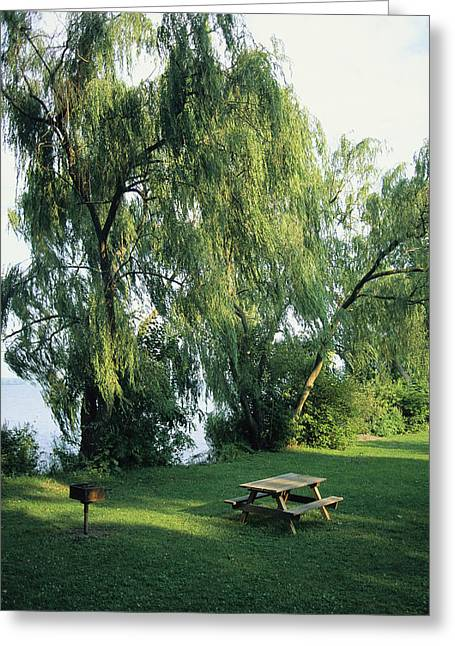Middle Atlantic States Greeting Cards - A Willow-lined Lakeside Picnic Area Greeting Card by Skip Brown