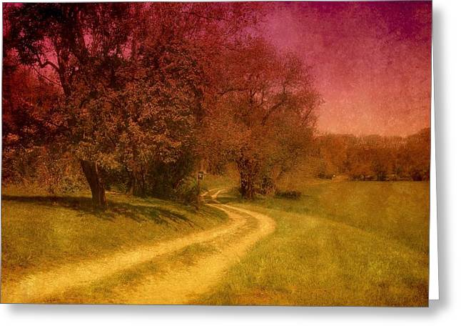 Country Framed Prints Greeting Cards - A Winding Road - Bayonet Farm Greeting Card by Angie Tirado