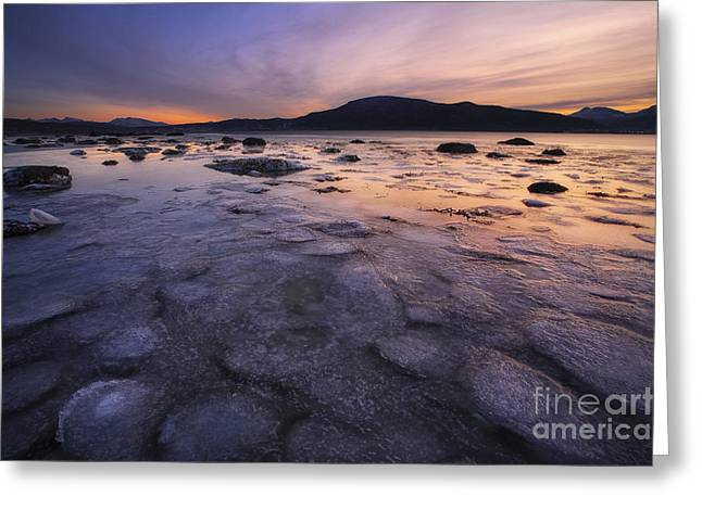 Sunset In Norway Greeting Cards - A Winter Sunset At Evenskjer In Troms Greeting Card by Arild Heitmann