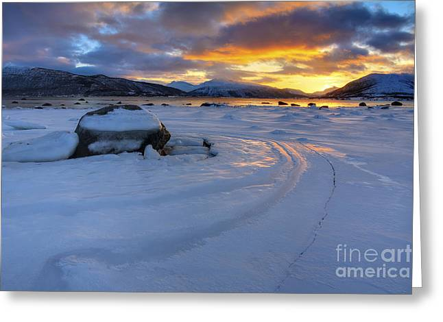 Sunset In Norway Greeting Cards - A Winter Sunset Over Tjeldsundet Greeting Card by Arild Heitmann