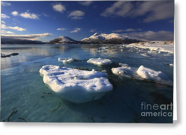 Skanland Greeting Cards - A Winter View Looking Greeting Card by Arild Heitmann