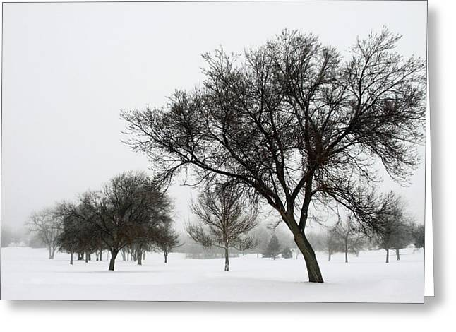 Foggy Day Greeting Cards - A Winters Day Greeting Card by The Forests Edge Photography - Diane Sandoval