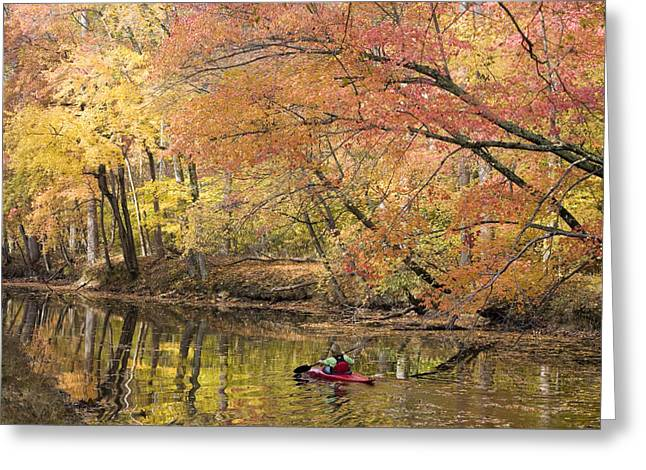 Caucasian Appearance Greeting Cards - A Woman Kayaking Down The Chesapeake Greeting Card by Skip Brown