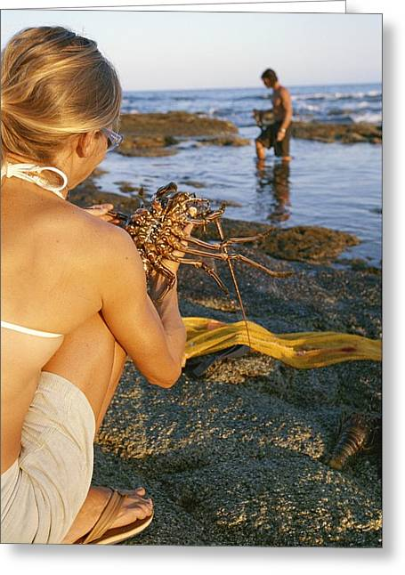 Beach Model Greeting Cards - A Woman Looks At A Lobster While A Man Greeting Card by Jimmy Chin