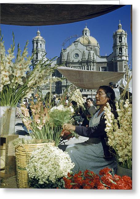 Mexico City Greeting Cards - A Woman Sells Flowers In Plaza Near Our Greeting Card by Justin Locke