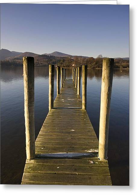 Trees Reflecting In Water Greeting Cards - A Wooden Dock Going Into The Lake Greeting Card by John Short