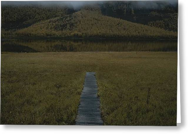 A Wooden Pathway Leads To An Greeting Card by Randy Olson