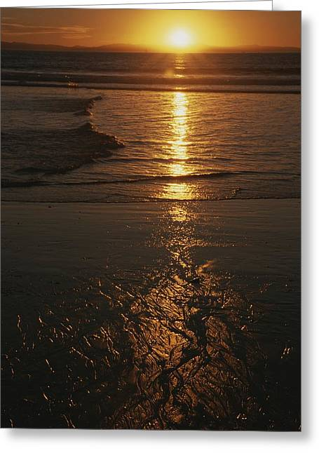 Pacfic Ocean Greeting Cards - A yellow sunset Greeting Card by Stacy Gold