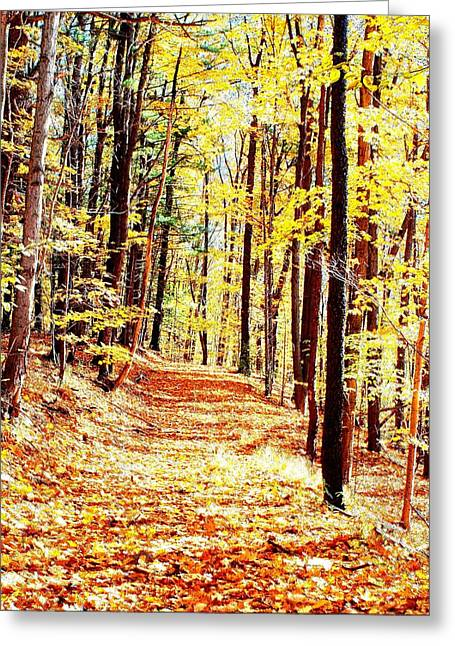 Finger Lakes Greeting Cards - A Yellow Wood Greeting Card by Joshua House