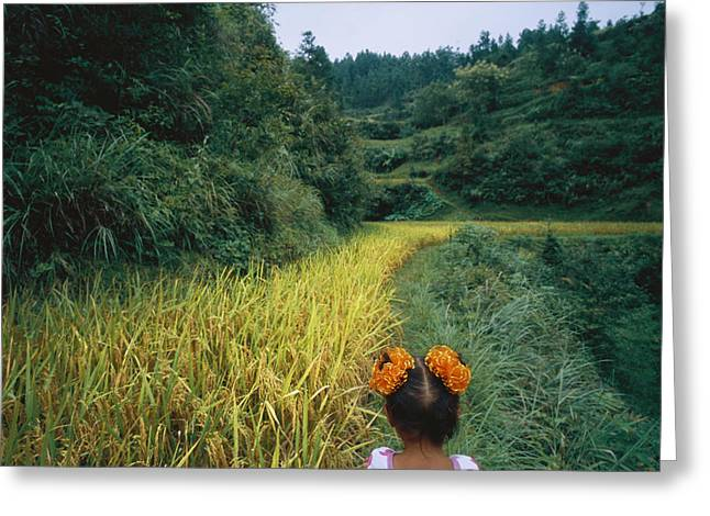 Chinese Ethnicity Greeting Cards - A Young Girl Wanders The Rice Fields Greeting Card by Lynn Johnson