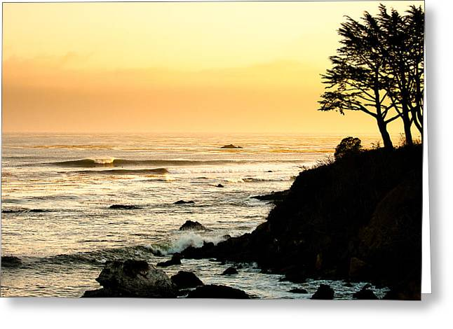 Coast Highway One Greeting Cards - Abalones Cayucos Greeting Card by Andy Bowlin