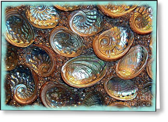 Abalones Greeting Card by Judi Bagwell
