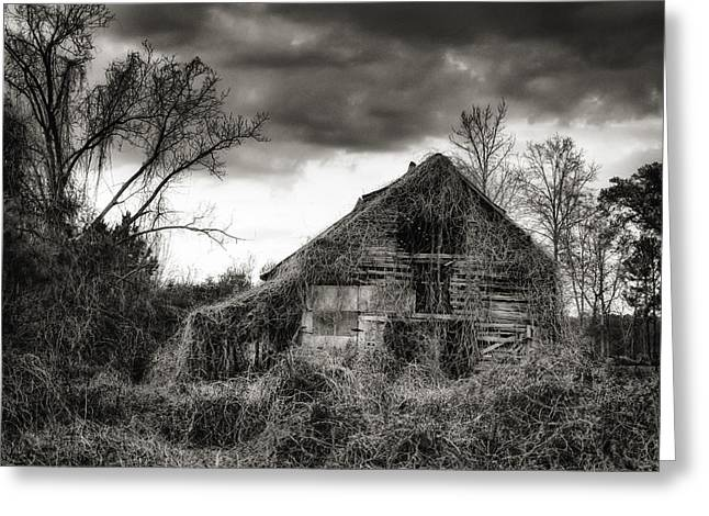 Brenda Bryant Photographs Greeting Cards - Abandoned Barn Greeting Card by Brenda Bryant