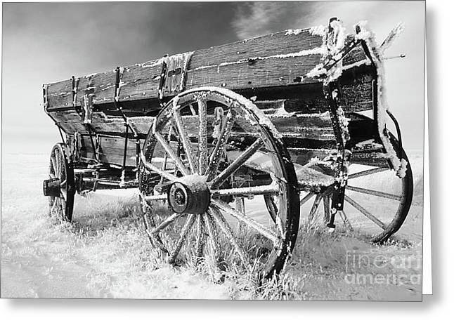 Old Western Photos Greeting Cards - Farming Nostalgia Greeting Card by Bob Christopher