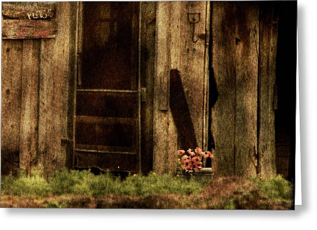 Abandoned Greeting Card by Bonnie Bruno