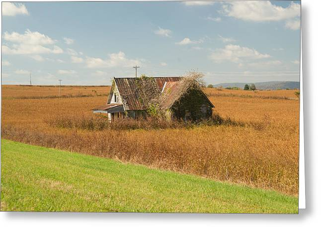 Fascination Greeting Cards - Abandoned Farmhouse in Field 2 Greeting Card by Douglas Barnett