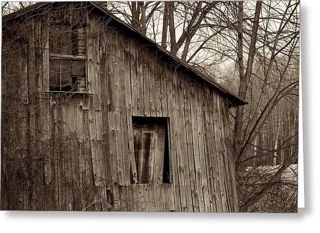 Residential Structure Greeting Cards - Abandoned Farmstead Facade Greeting Card by John Stephens
